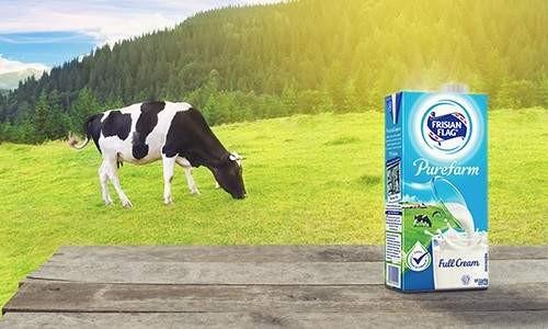 Apakah Proses UHT Mengubah Kandungan Susu?