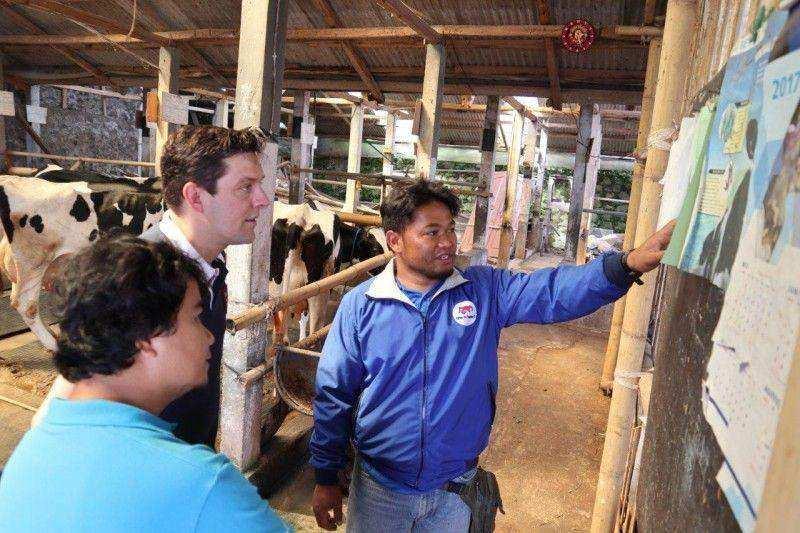 Frisian Flag Indonesia Perkuat Program Farmer2Farmer  dengan Memperluas Jangkauan dan Ilmu Manajemen Bisnis