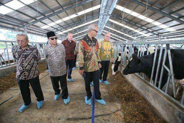 Frisian Flag Indonesia Meluncurkan 'Dairy Village' Independen Pertama di Indonesia